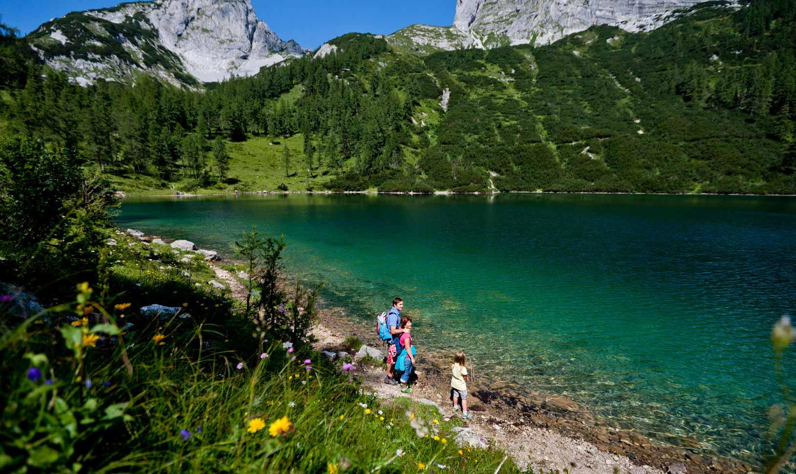 Sommer Seeblick